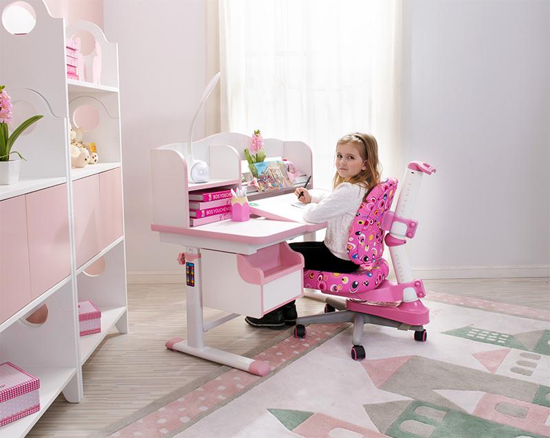 博士有成DRZ-3100L学习桌配DRY-305椅子
