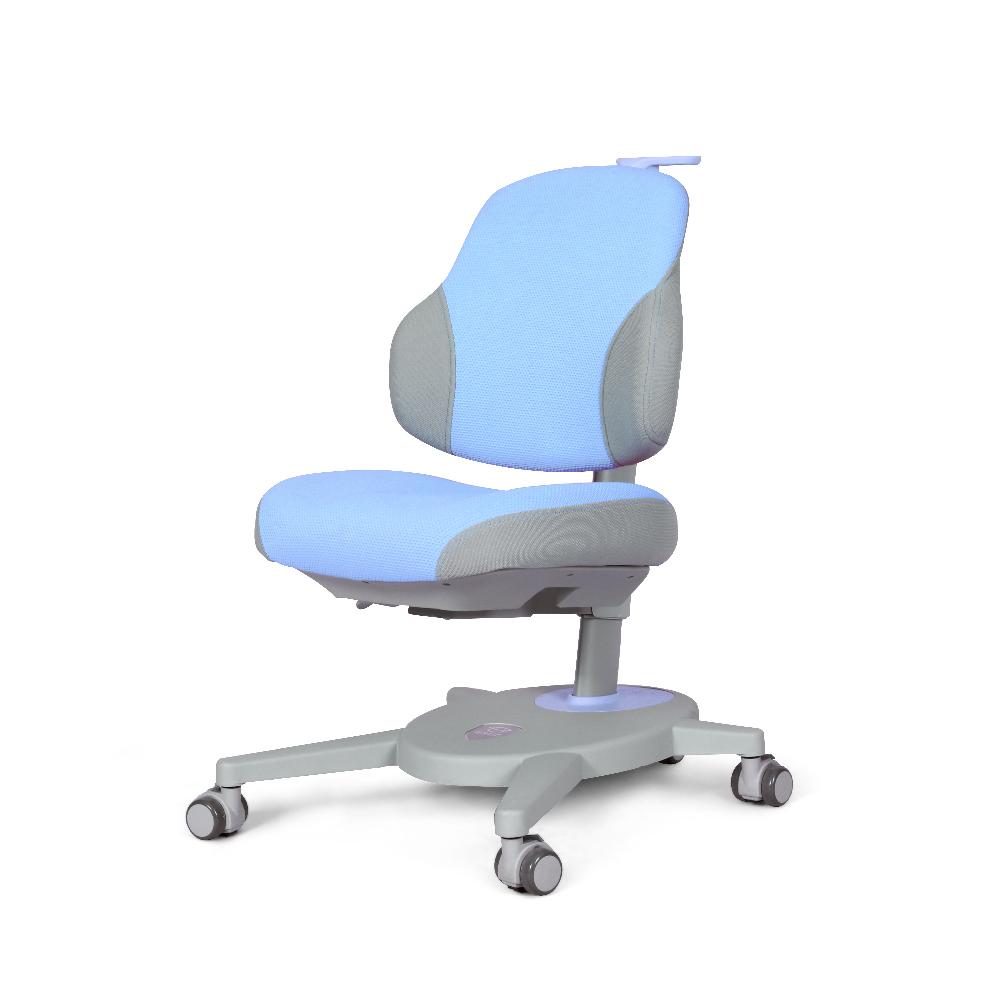 DRY-802儿童矫姿椅子蓝色